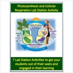 Cellular Respiration and Photosynthesis Lab Station