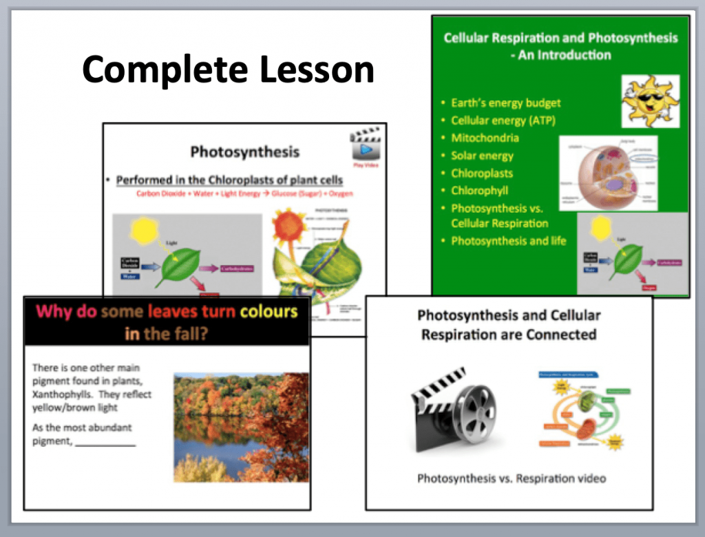 cellular respiration and photosynthesis lesson